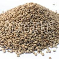 biomarket-quinoa-real-em-grao.