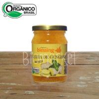 geleia gengibre biomarket1 200x200 - Geleia Orgânica de Gengibre - 200g - Blessing